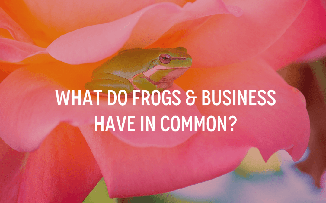What Do Frogs & Business Have In Common?