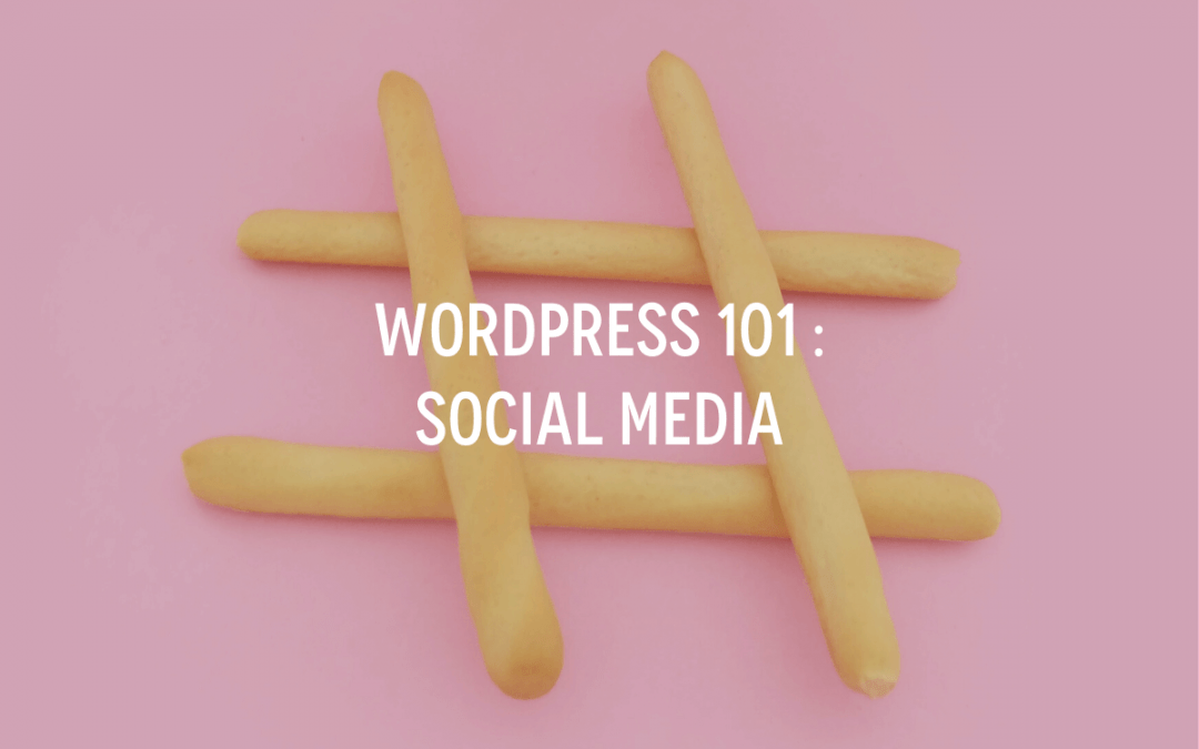 WordPress 101 : Social Media
