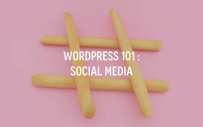 WordPress 101 : Social Media