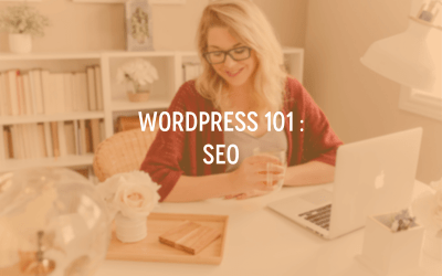 WordPress 101 : SEO