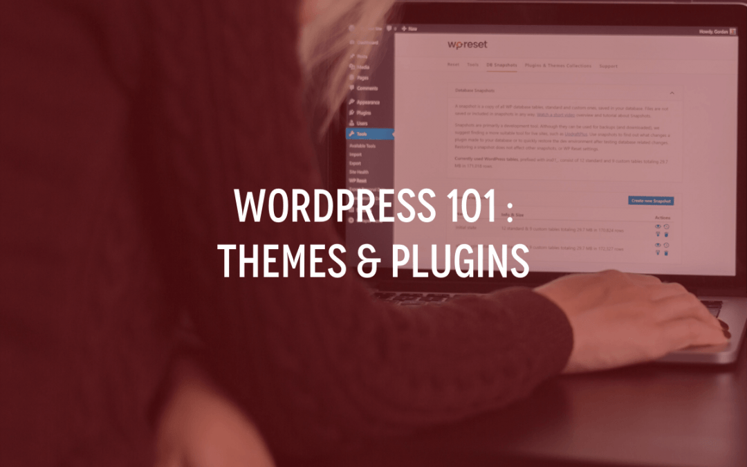 WordPress 101 : Themes & Plugins