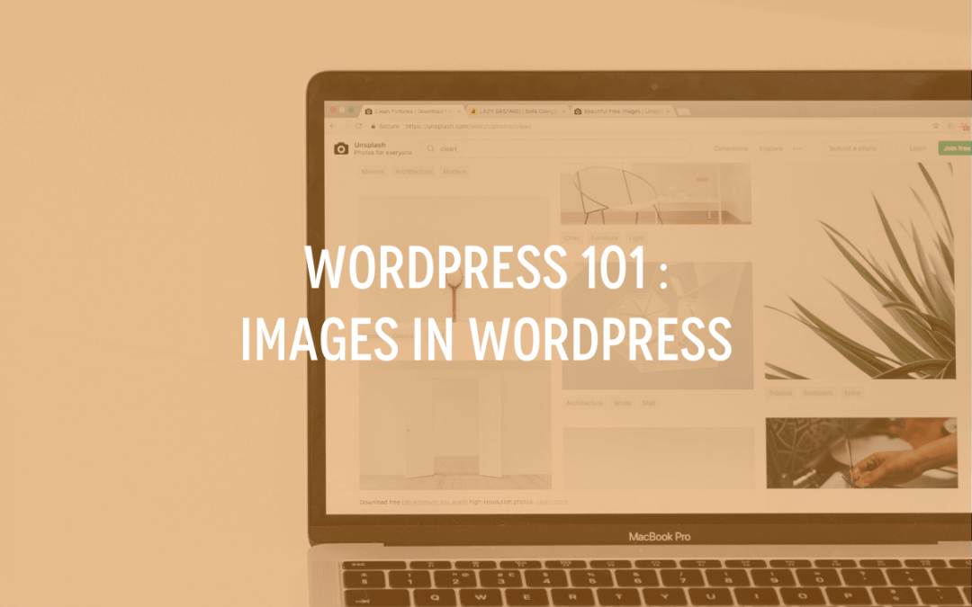 WordPress 101 : Images in WordPress