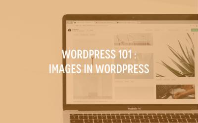WordPress 101 : Images in WordPress