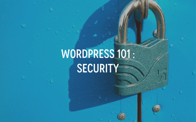 WordPress 101 : Security